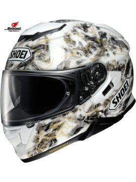 Helmet GT-Air II Conjure TC-6