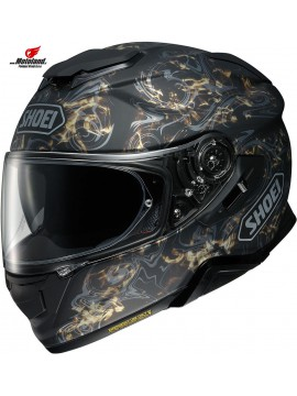 Helmet GT-Air II Conjure TC-9